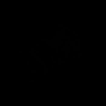 outlinePulsar_700x700